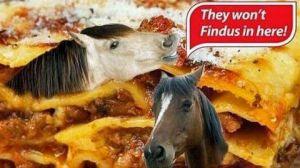Pferdefleisch Skandal